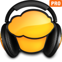 mufin player pro icon