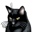 BatteryCat icon