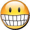 YLH.bot icon