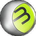 FMH 2014 Save Editor icon
