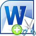 MS Word Add or Remove Data, Text & Characters Software icon