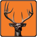 Maximum Archery icon
