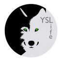 YSLifeOS icon