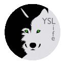 YSLifeOS icon