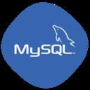HeidiSQL icon
