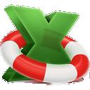 Hetman Excel Recovery icon