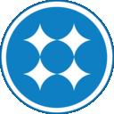 QSR NVivo icon