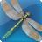 ParetoLogic Anti-Virus PLUS icon